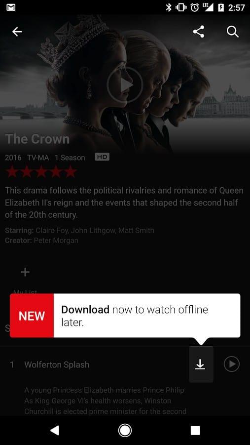 האם אפשר להוריד תוכניות עם נטפליקס Netflix