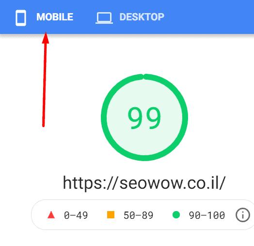 בדיקת מהירות האתר שלי בPageSpeed- Insights